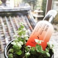 Сыворотка для лица с экстрактом розы THE SKIN HOUSE Rose heaven serum 50 мл: фото
